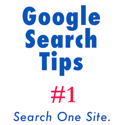 Google search single site
