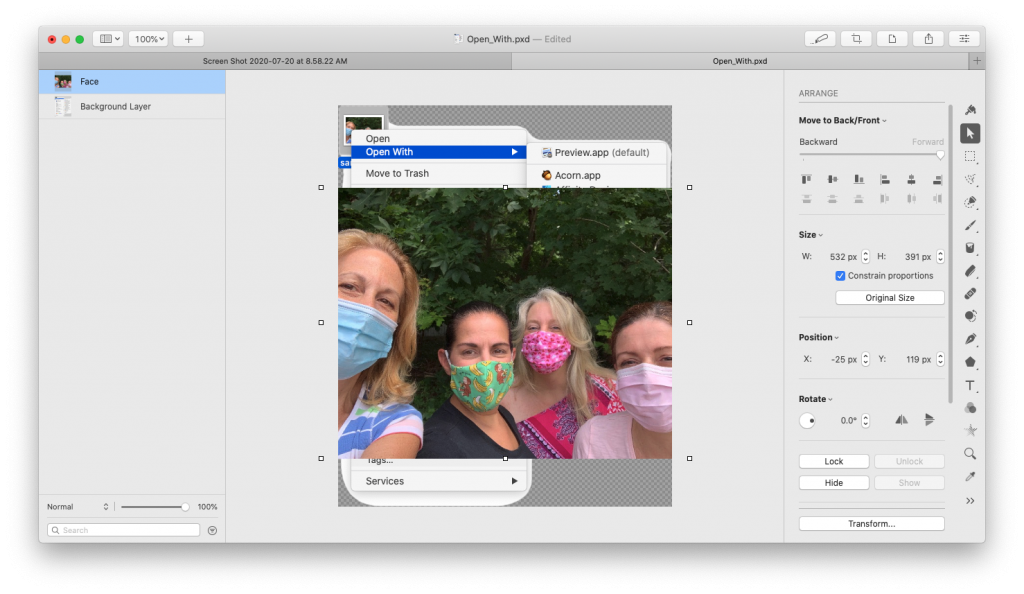 Icon dragged into Pixelmator Pro document.