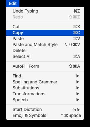 Edit menu with Copy selected